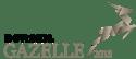 Gazelle 2018 til hubspot-1
